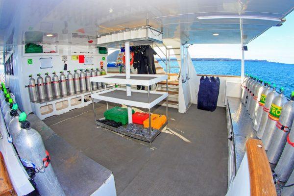 Aqua dive platform1