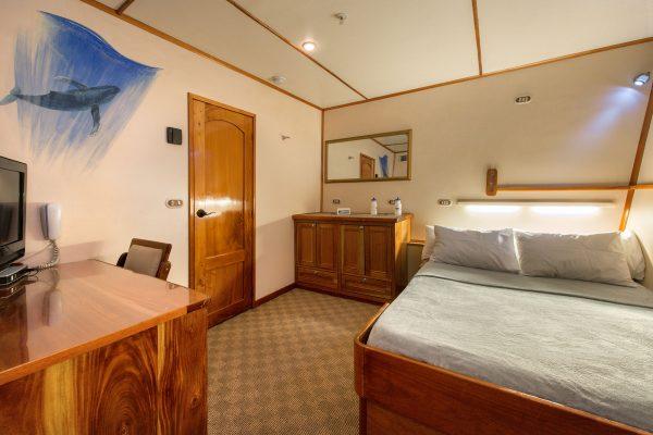 argo cabin3