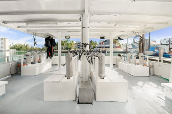 bahamas master dive deck