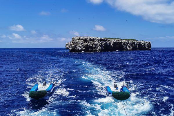 calipso dinghys