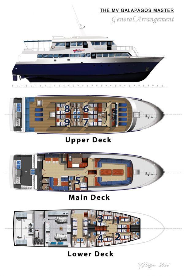Schiffs layout