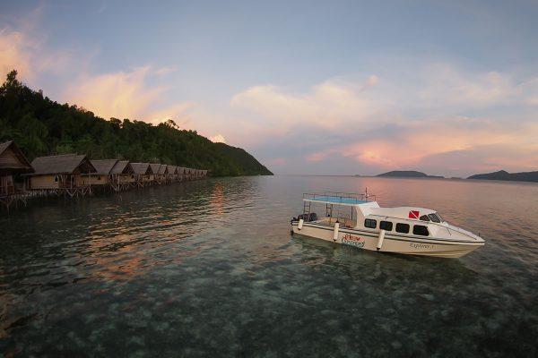papua explorers transferboat